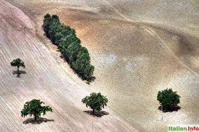 Arcevia: Felder bei Piticchio