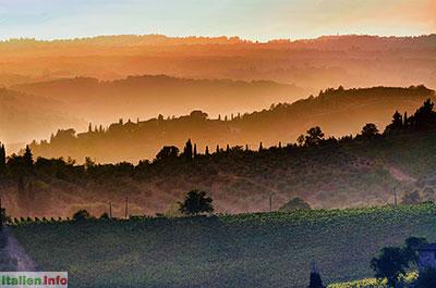 Greve in Chianti: Abendlicht in den Hügeln bei Panzano