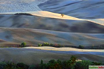 Pienza: Felder im Val d`Orcia