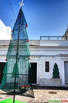 Mattinata: Weihnachtsbaum
