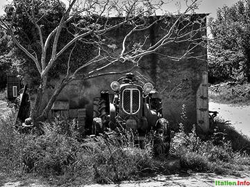 Diamante: Alter Orsi Traktor bei Cirellla