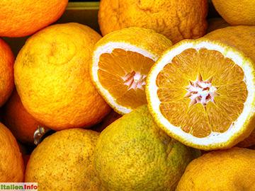 Formia: Frische Orangen