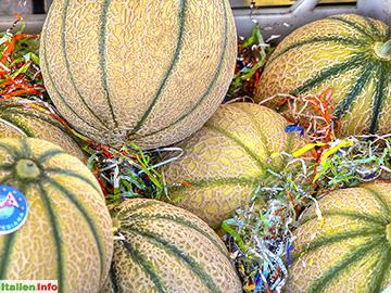 Formia: Zuckermelonen
