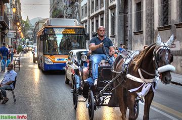 Palermo: Kutschfahrt