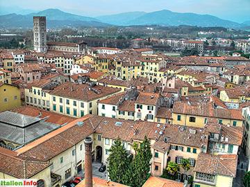 Lucca: Torre Guinigi - Blick über die Altstadt