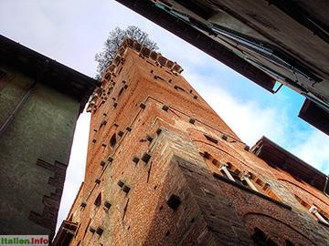 Lucca: Torre Guinigi