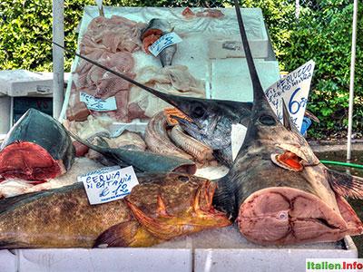 Casale sul Sile: Wochenmarkt - Fischvielfalt