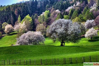 San Zeno di Montagna: Prada-Hochebene